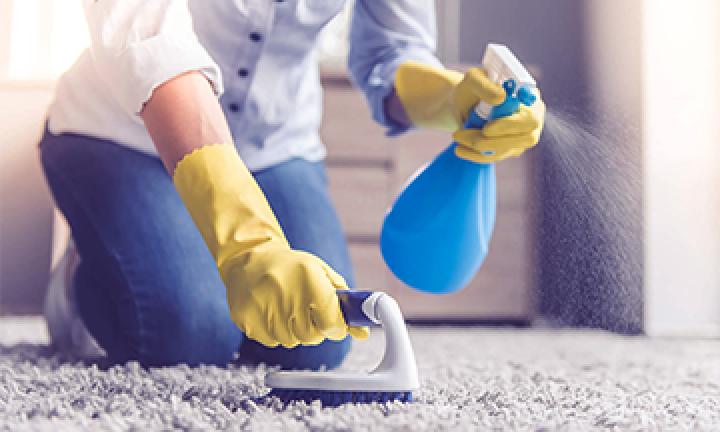 Химчистка ковров, мебели